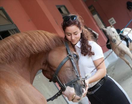 cavallo-esperienza-img